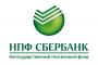 logo-npf-ver-rus111